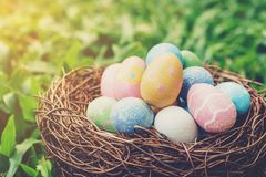 Colorful easter eggs and nest on green grass with sunlight. vintage toned stock photography