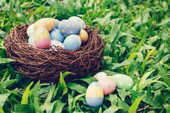 Colorful easter eggs and nest on green grass with sunlight. vintage toned stock photos
