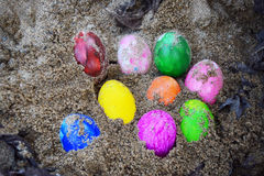 Colorful easter eggs in nest on meadow Stock Image