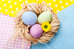 Colorful Easter Eggs in the Nest Stock Photography