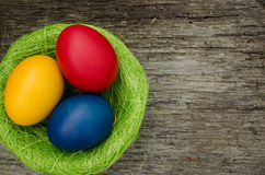 Colorful easter eggs  in nest Royalty Free Stock Photo