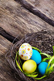 Colorful easter eggs in a nest on wooden background Stock Photos