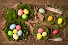 Colorful easter eggs in nests Stock Image