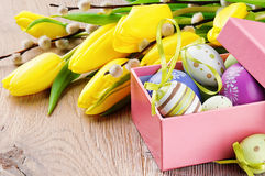 Colorful Easter eggs in open gift box. With tulips Stock Photos