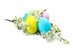 Colorful Easter eggs over white Stock Image