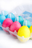 Colorful easter eggs in package isolated. Stock Images