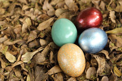 Colorful easter eggs in pile of in weathered leaves. Spring holiday concept Stock Photo
