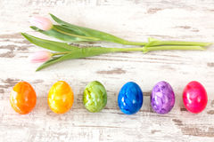 Colorful Easter eggs with pink Stock Image