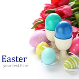 Colorful easter eggs and pink tulips over white with sample text Stock Photography