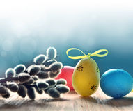 Colorful easter eggs and pussy-willow on blue background Stock Photo