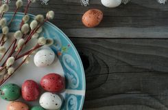 Colorful easter eggs and pussy willow, spring holidays concept. Selective focus, top view, space for text Royalty Free Stock Photo