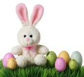 Colorful easter eggs and rabbit on grass, isolated Royalty Free Stock Image