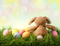 Colorful easter eggs and rabbit Royalty Free Stock Images