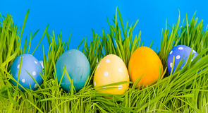 Colorful easter eggs in a row on grass Royalty Free Stock Images