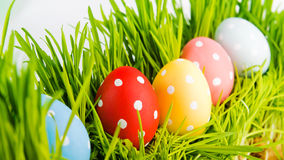 Colorful easter eggs in a row on grass Stock Photography