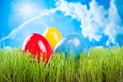 Colorful easter eggs with sky background. Easter eggs dyed in spring grass and blue sky background Royalty Free Stock Photography