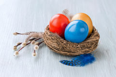 Colorful Easter eggs in small nest, willow branch Stock Photo