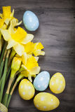 Colorful Easter eggs and spring daffodils on paper background Royalty Free Stock Images