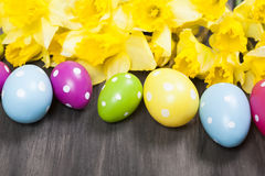 Colorful Easter eggs and spring daffodils on paper background Royalty Free Stock Image