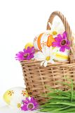 Colorful Easter Eggs with Spring Flowers Stock Photos