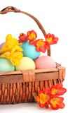 Colorful Easter Eggs with Spring Flowers Stock Images