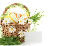Colorful Easter Eggs with Spring Flowers Stock Photo
