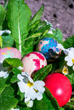 Colorful Easter eggs Royalty Free Stock Images