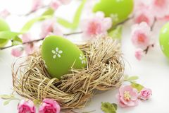 Easter eggs and flowers on white Stock Image