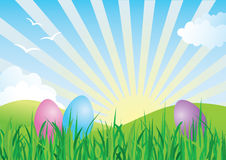 Colorful Easter Eggs in Spring Landscape Royalty Free Stock Photography