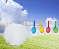 Colorful easter eggs on spring meadow Stock Images
