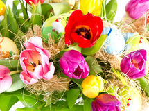 Colorful easter eggs with tulips Stock Photography