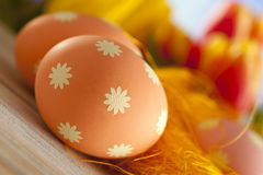 Colorful Easter eggs and tulips Royalty Free Stock Photo