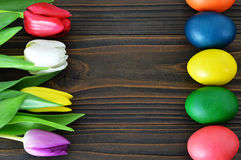 Colorful Easter eggs and tulips on wooden background Royalty Free Stock Photography