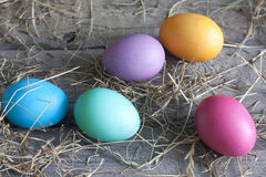Colorful easter eggs on vintage wooden boards Royalty Free Stock Images