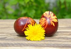 Colorful Easter eggs on wood. Traditional decoration Royalty Free Stock Photo