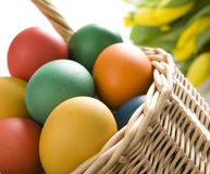 Colorful easter eggs in wooden bowl Stock Image