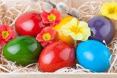 Colorful Easter Eggs in a Wooden Box Stock Image