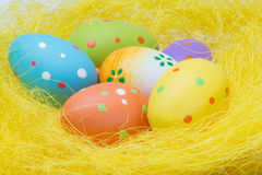 Colorful easter eggs in yellow nest Stock Photography