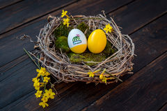 Colorful Easter eggs. Yellow Easter eggs in a nest Royalty Free Stock Images