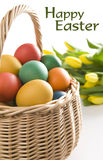 Colorful easter eggs and yellow tulips Stock Photo