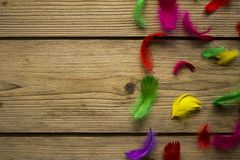 Colorful easter feathers on wooden table. Colorful easter feathers in nest shot on bronze wooden table for easter time royalty free stock image
