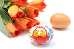 Colorful Easter and fresh egg with bouquet of tulips Stock Image