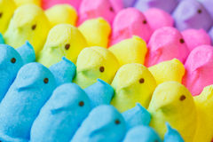 Colorful Easter Marshmallow Treats Royalty Free Stock Photography