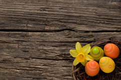 Colorful Easter nest on old wood with copyspace Stock Image