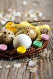 Colorful Easter nest with quail eggs closeup. Royalty Free Stock Image