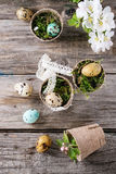 Colorful Easter quail eggs Royalty Free Stock Image
