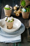 Colorful Easter quail eggs. Table setting decor colorful Easter quail eggs with spring cherry flowers, moss in garden pots, empty plates, cutlery over old wood Royalty Free Stock Images