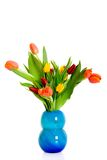 Colorful Easter tulips Royalty Free Stock Photo
