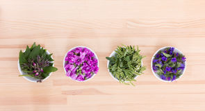 Colorful, edible blossoms. Bowls of different, colorful, edible blossoms Royalty Free Stock Photography