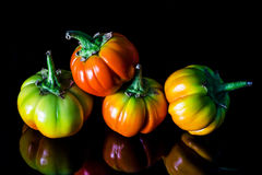 Colorful eggplant vegetable Royalty Free Stock Photos